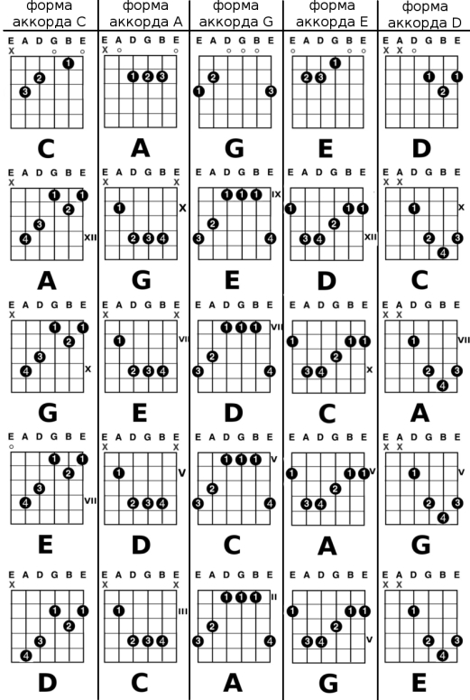 http://guitarline.ru/images/2010_01/c_a_g_e_d_chords.jpg