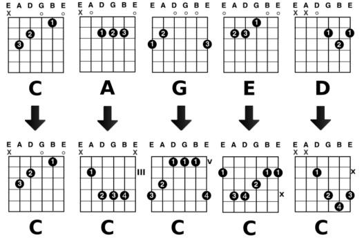 Диаграмма №1 - формы аккордов